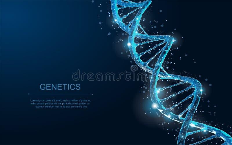 DNA Spirale poligonale astratta dell'elica della molecola del DNA del wireframe 3d sul blu illustrazione di stock