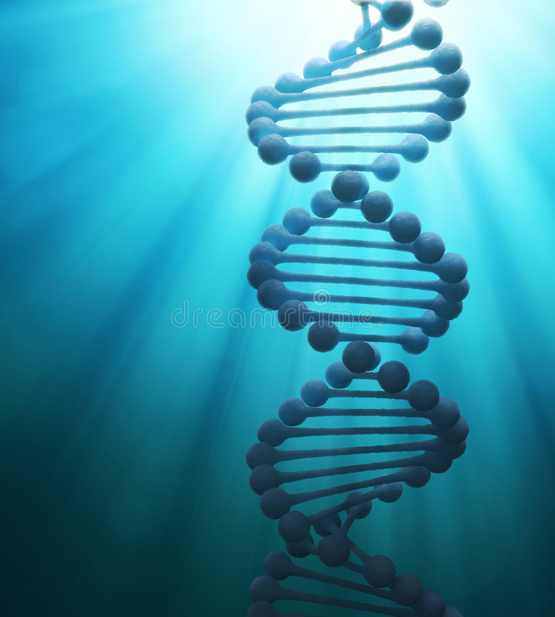 Download DNA strand model stock illustration. Illustration of chromosome - 26015388