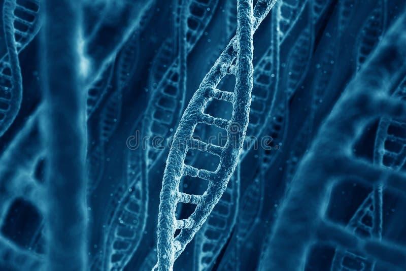 Download DNA strands stock illustration. Image of medical, strand - 21512297