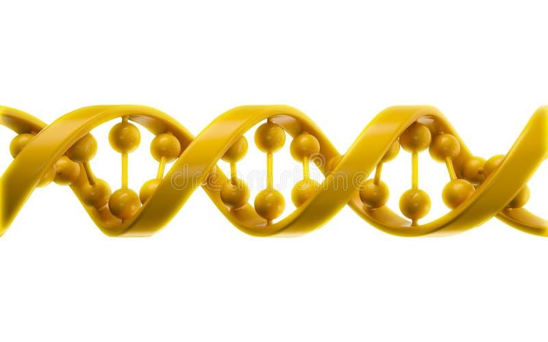 Download DNA strands stock illustration. Image of clone, code - 23257201