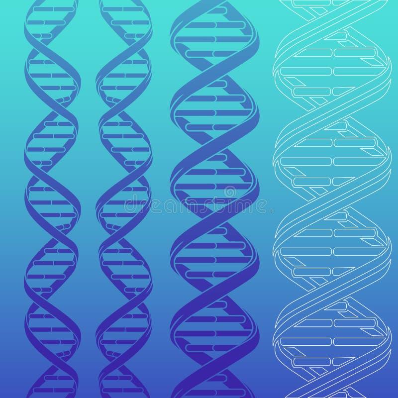 DNA strands royalty free illustration