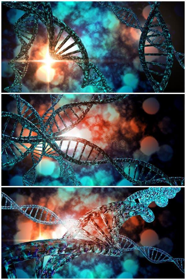 DNA-Strangs-Collage stockbilder