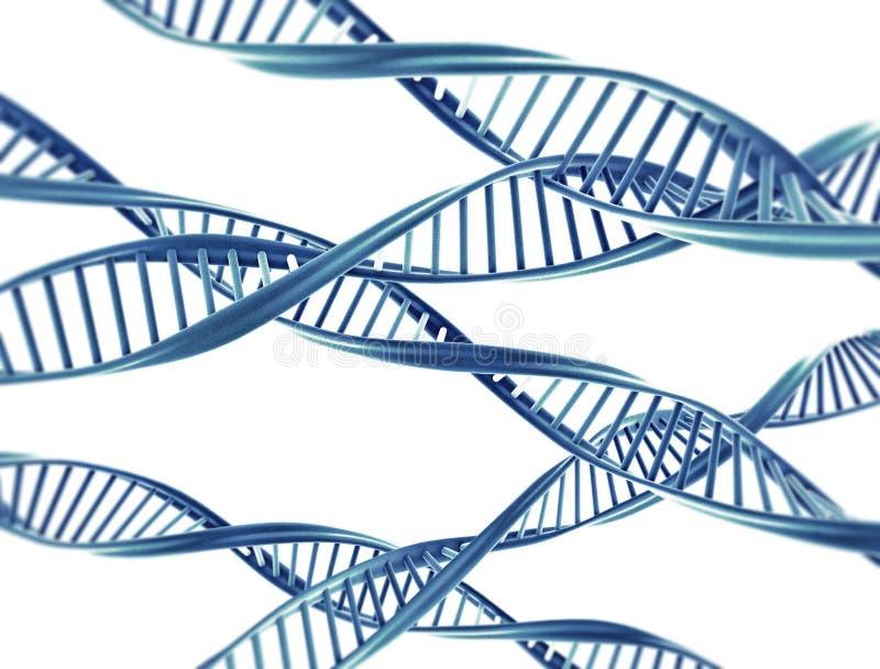 DNA strings royalty free illustration