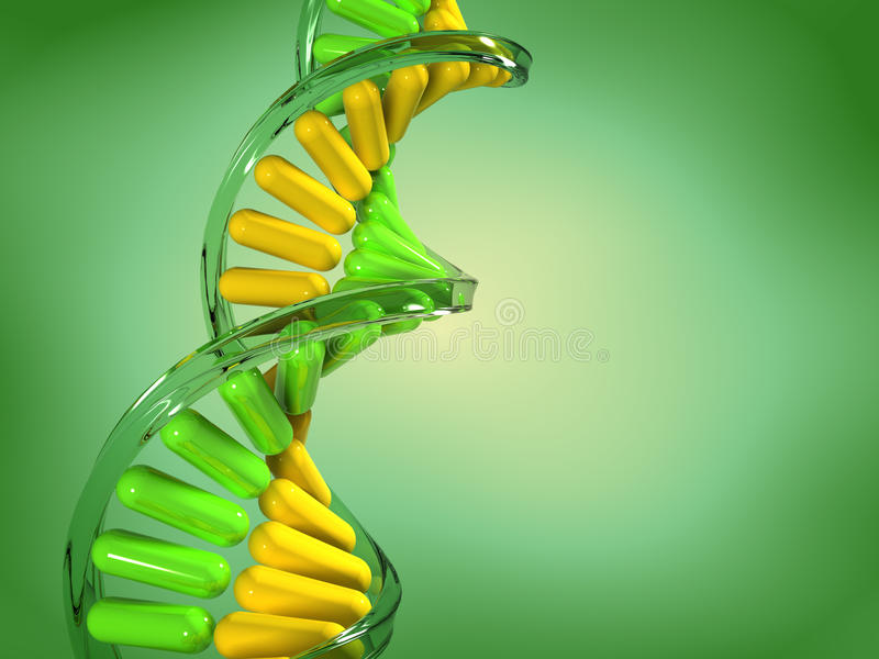 Download DNA structure stock illustration. Image of energy, strand - 11655109