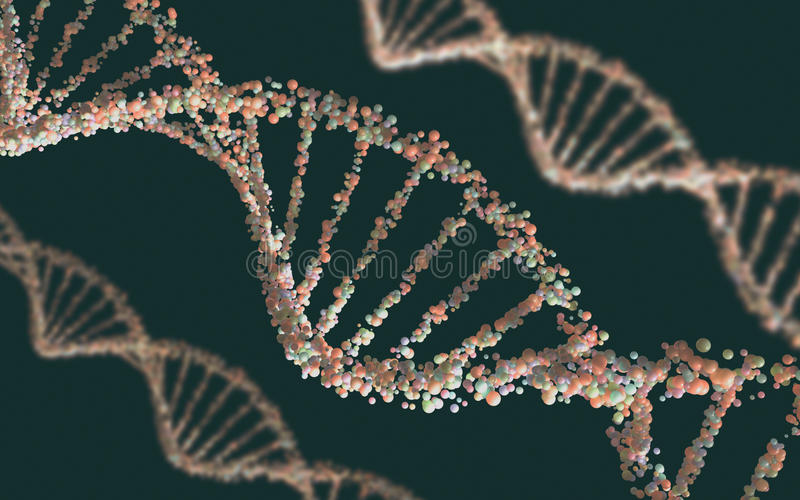 DNA Structure royalty free stock photography