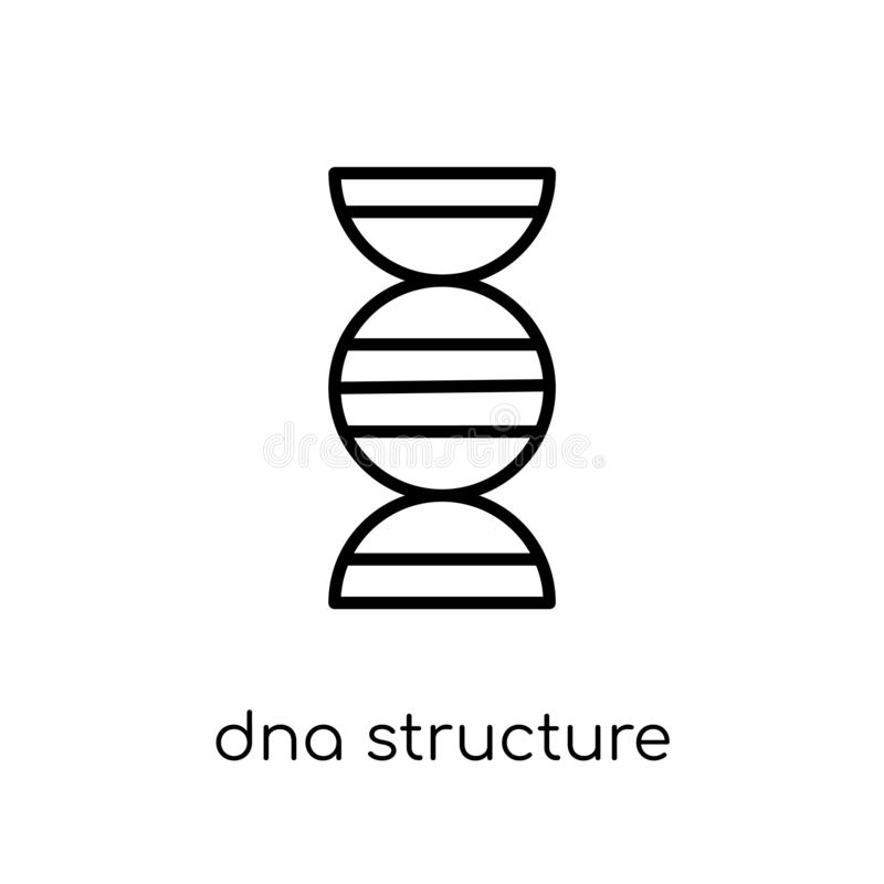 Dna structure icon. Trendy modern flat linear vector Dna structu vector illustration
