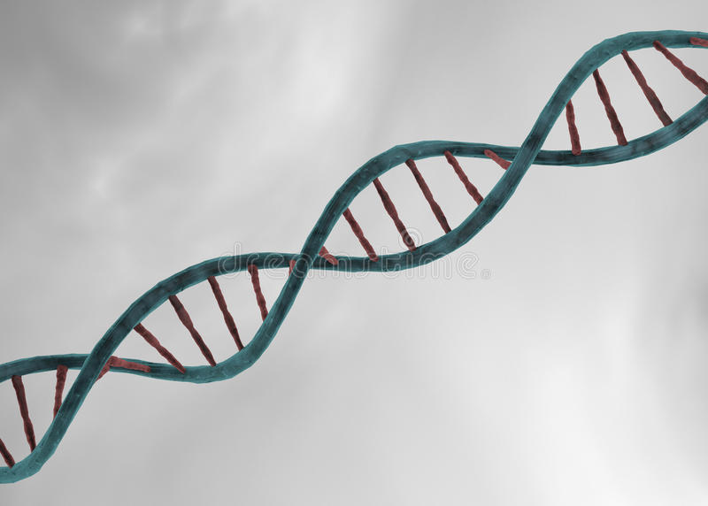 dna structure stock photos