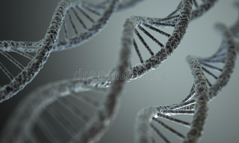 DNA Structure. Long structure of the DNA double helix in depth of view