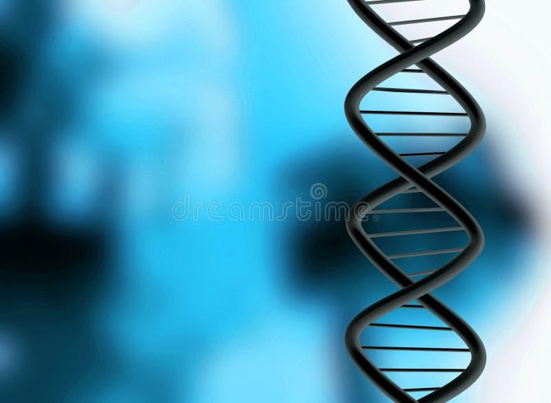 DNA-Struktur vektor abbildung