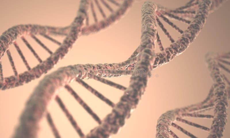 DNA struktura fotografia stock