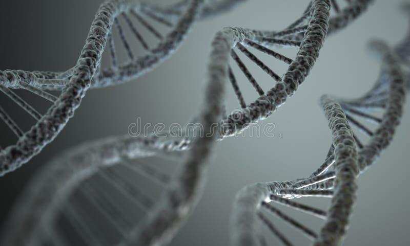 DNA struktura obraz stock