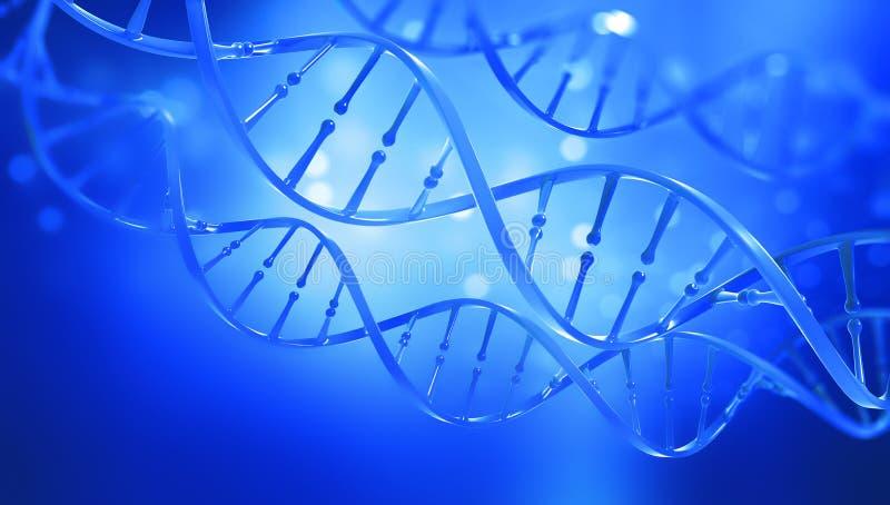 DNA Studio sulla struttura del gene della cellula Struttura della molecola del DNA illustrazione della doppia elica 3D illustrazione vettoriale