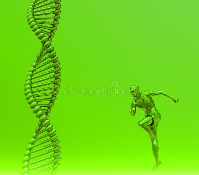 DNA umano royalty illustrazione gratis