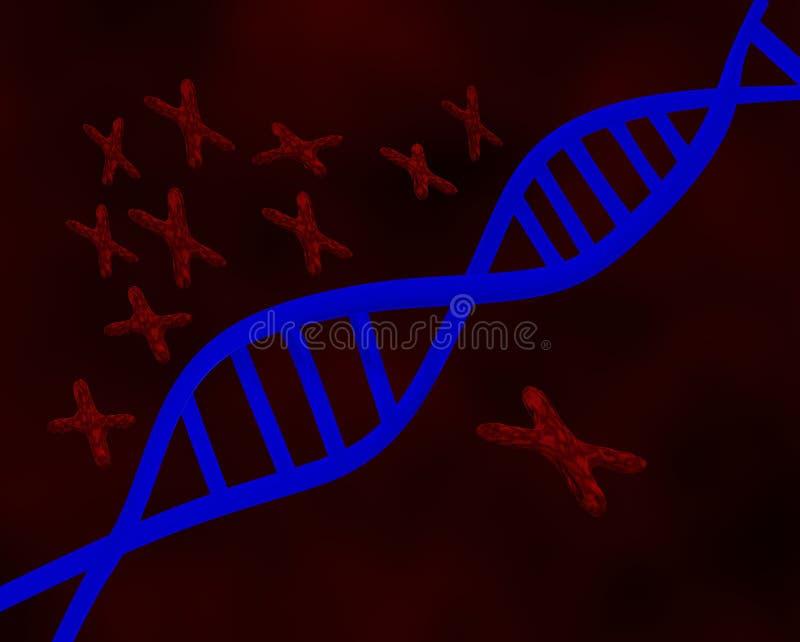 DNA und Chromosomen vektor abbildung