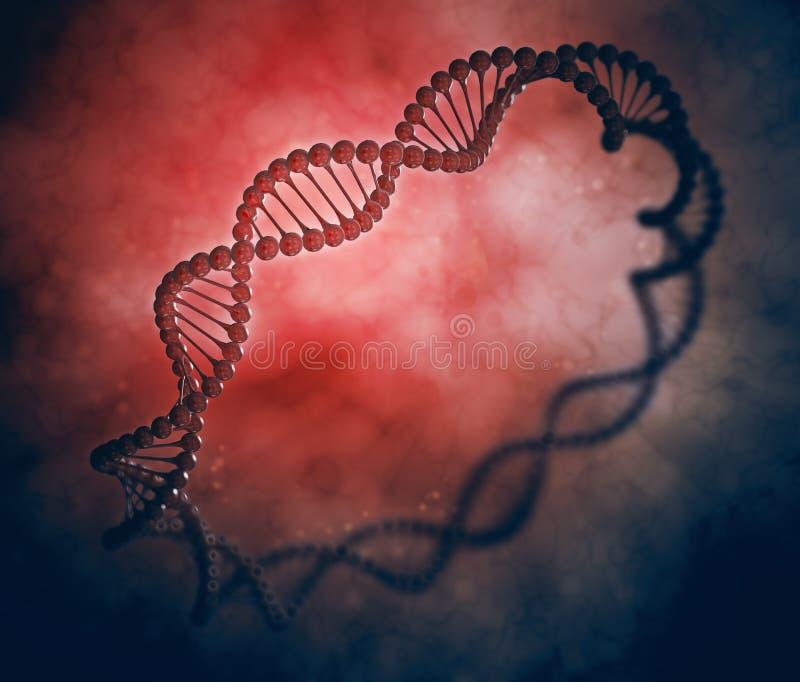 DNAcirkel royaltyfri illustrationer