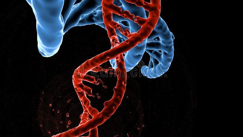 DNAforskningmolekyl illustration 3d Analys av den mänskliga genom för struktur vektor illustrationer
