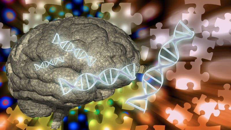 DNAhjärnpussel stock illustrationer