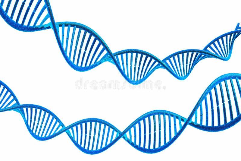 DNAmolekylar stock illustrationer