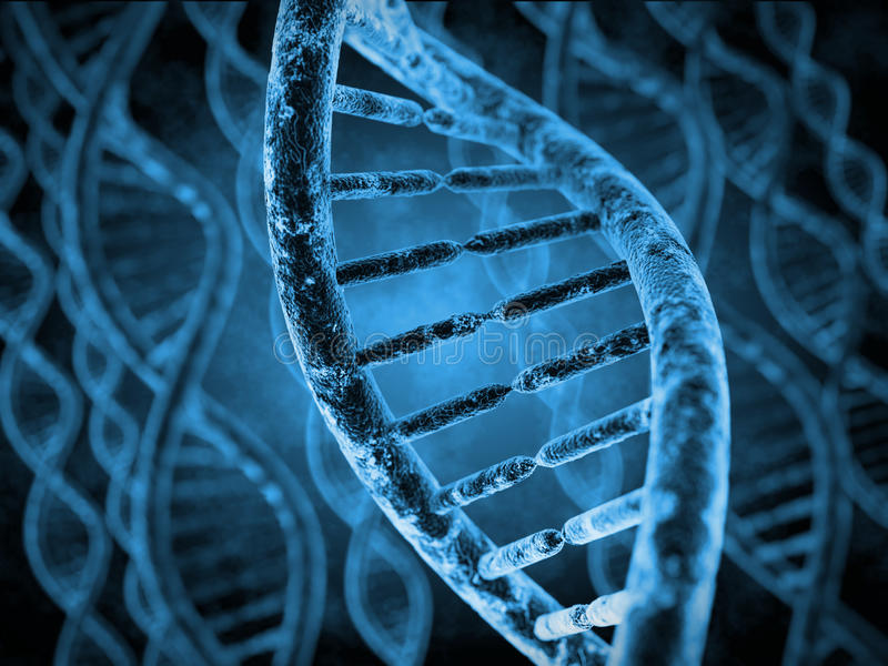 DNAmolekylar vektor illustrationer