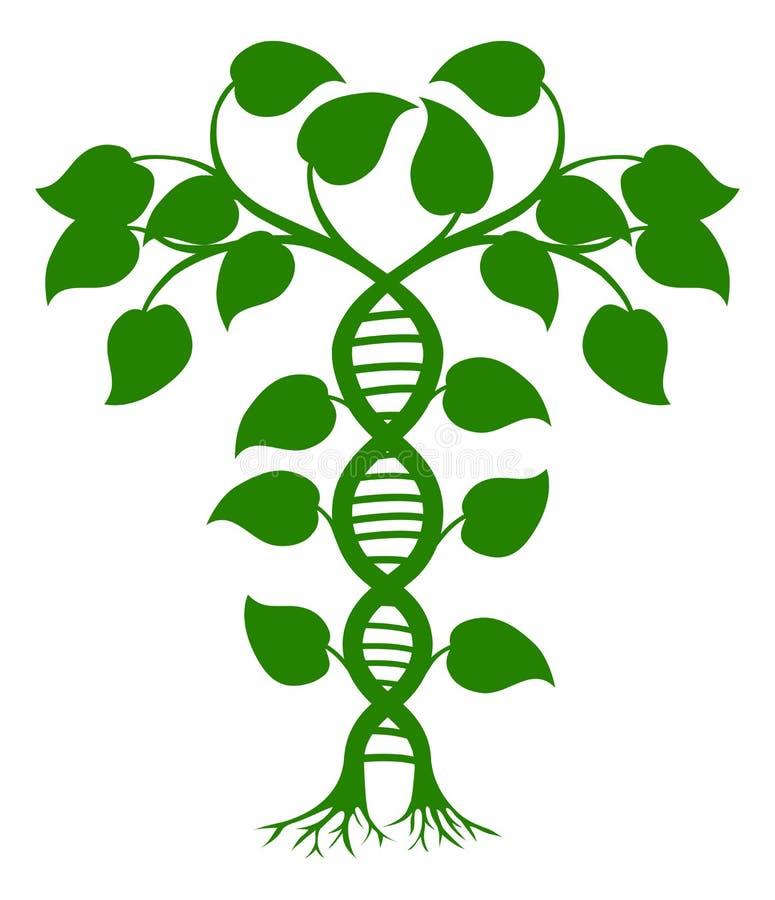 DNAnaturväxt royaltyfri illustrationer