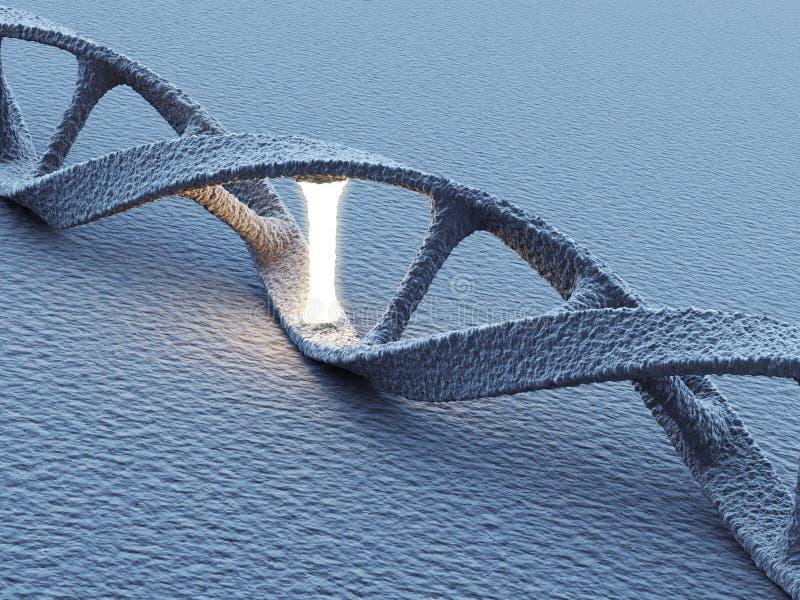 DNAspiralmolekylar. Vetenskapsbegrepp 3D royaltyfri illustrationer