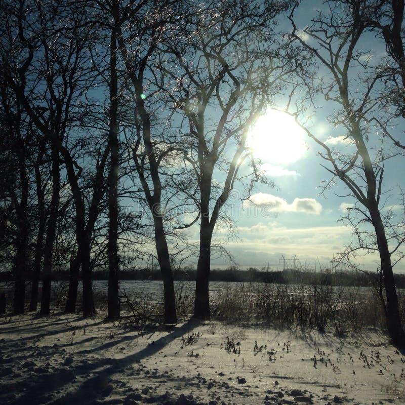 Dnepropetrovsk in de winterdagen ukraine stock fotografie