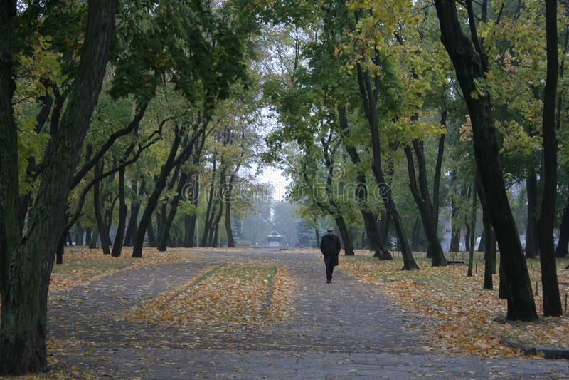 Dnieper的城市 免版税图库摄影