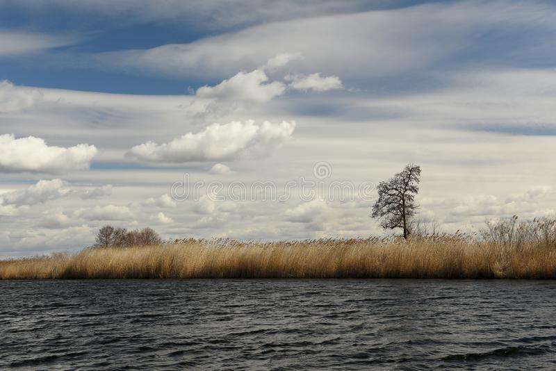 Dnieper River Delta. National park. River and wild reed marshes. royalty free stock photos