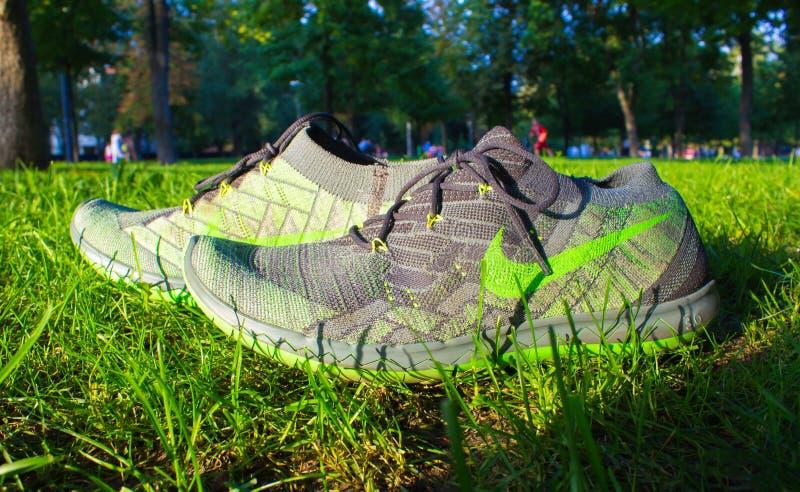 Dnipropetrovsk, Ucrânia - agosto, 21 2016: Sapatas novas do nike do estilo na grama verde - editorial ilustrativo imagens de stock
