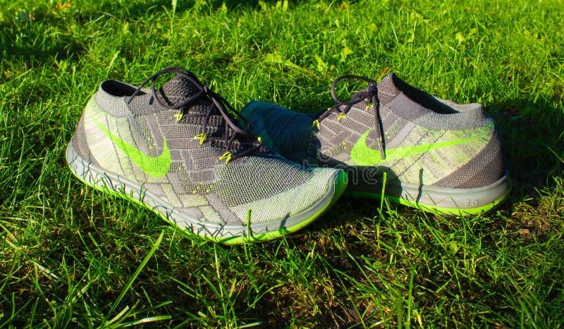 Dnipropetrovsk, Ucrania - agosto, 21 2016: Nuevos zapatos del nike del estilo en la hierba verde - editorial ilustrativo foto de archivo libre de regalías