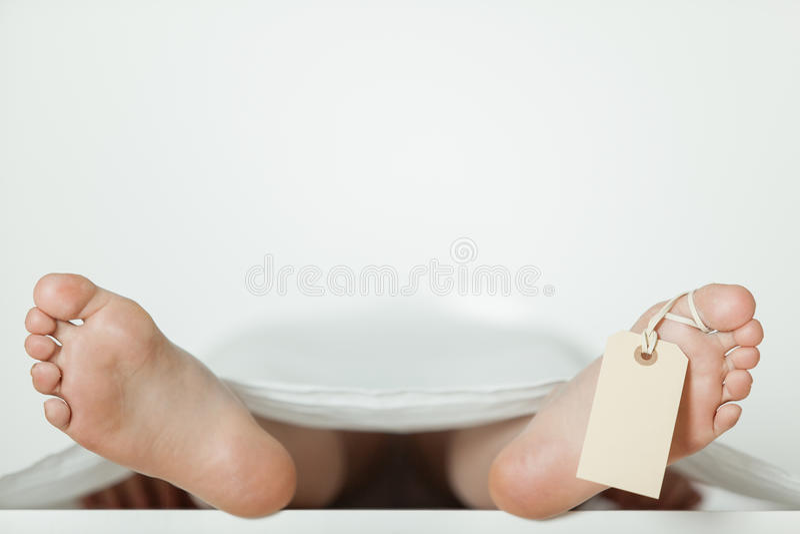 Dno nadzy cieki wtyka z pustą etykietką na palec u nogi zdjęcia stock
