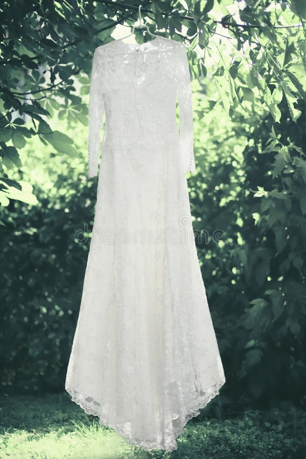 Do casamento elegante do laço do casamento vestido branco que pendura em um gancho sob a árvore imagem de stock royalty free