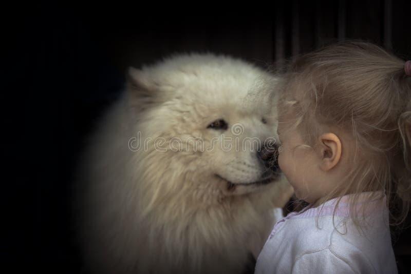 Do conceito ronco do animal doméstico do cuidado do cão de cachorrinho da criança da criança bondade animal da amizade do cuidado fotografia de stock