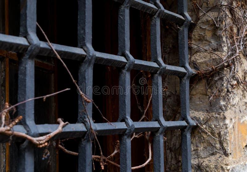 Do Dungeon velho da grelha da janela a falha escura entrelaçou-se pela peça selvagem das uvas da parede velha foto de stock royalty free