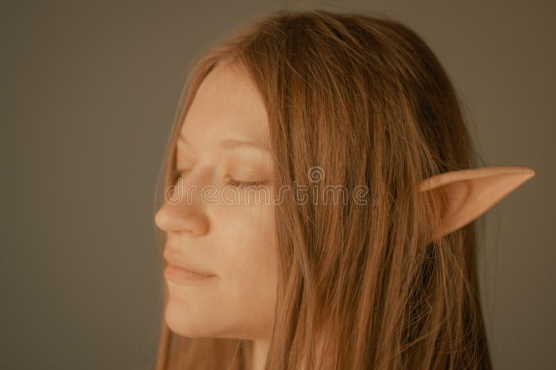 She is so elfish. Beautiful girl with elf ears over grey background stock photo