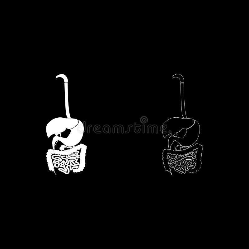 Do estilo liso branco ajustado da ilustração de cor do ícone do sistema digestivo imagem simples ilustração do vetor