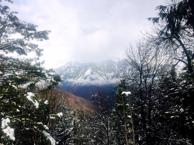 do góry śnieżne fotografia stock