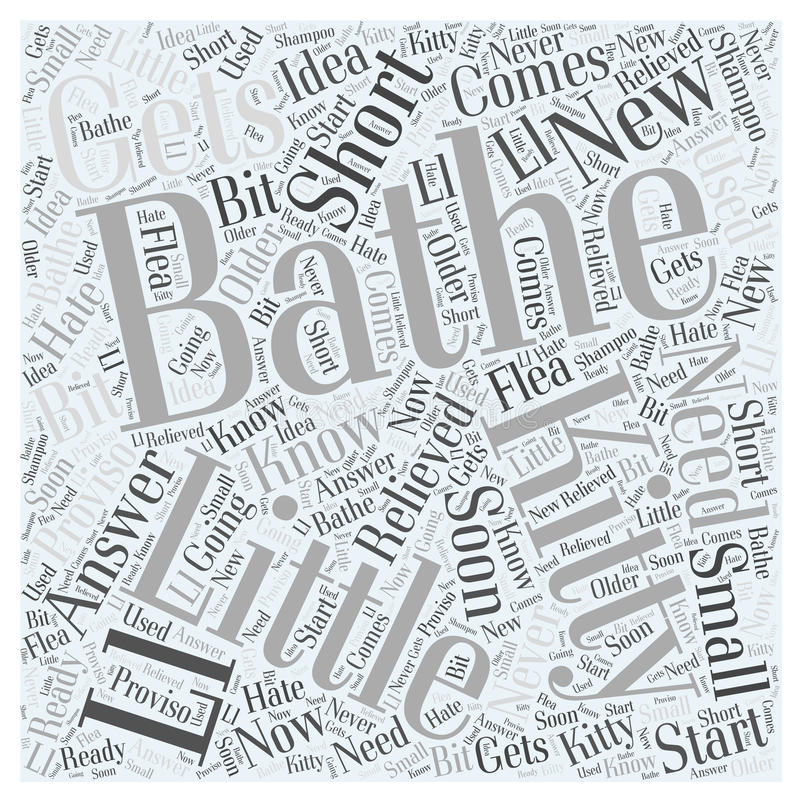 Do I Need to Bathe My New Kitty word cloud concept word cloud concept background stock illustration