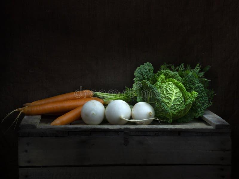 Do inverno dos vegetais vida ainda, estilo barroco do claro-escuro Pintura clara Couve, cenouras, nabo fotografia de stock royalty free