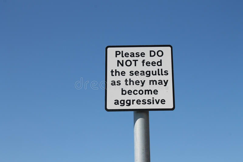 Do not feed aggressive seagulls sign royalty free stock photo