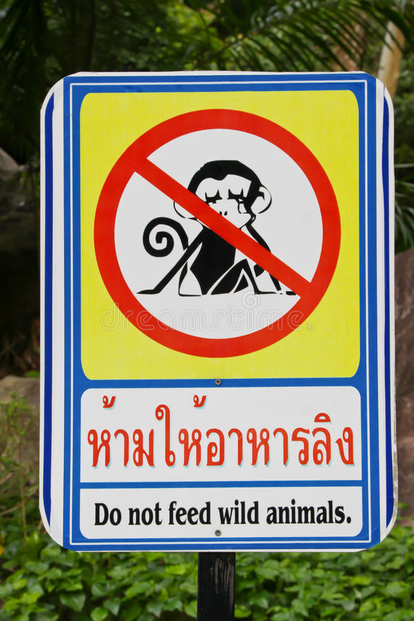 Do not feed Monkey stock image