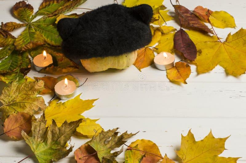 Do outono vida ainda foto de stock