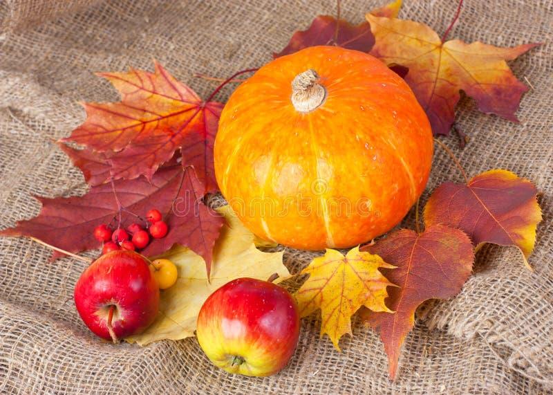 Do outono vida ainda com abóbora
