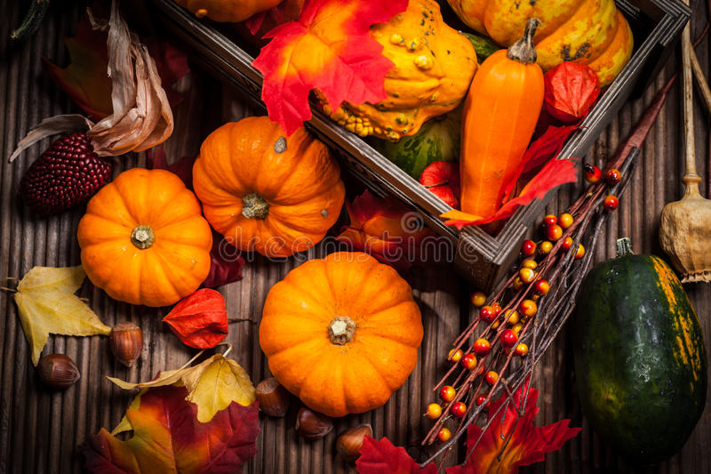 Do outono vida ainda com abóboras imagem de stock royalty free