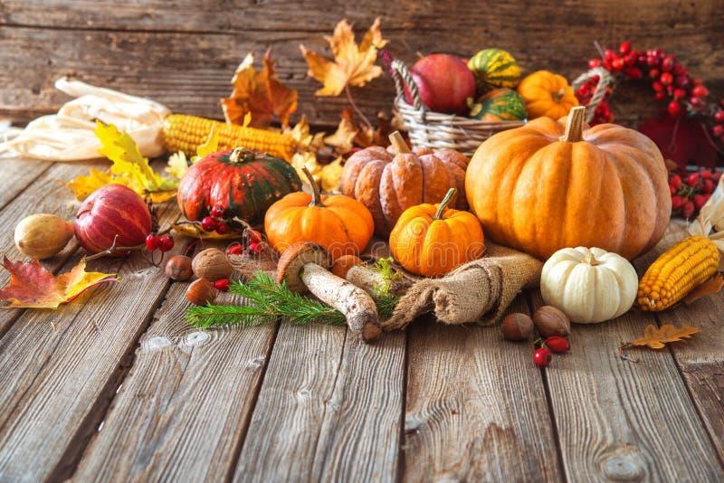 Do outono vida ainda com abóboras, espigas de milho, frutos e folhas imagem de stock