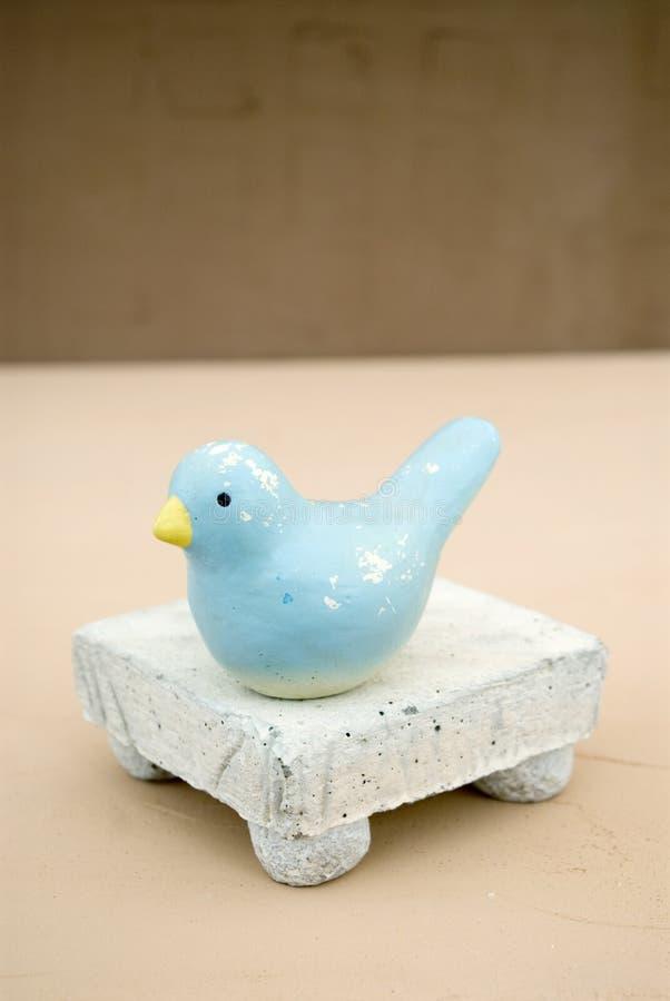 Do pássaro vida pequena ainda fotografia de stock royalty free