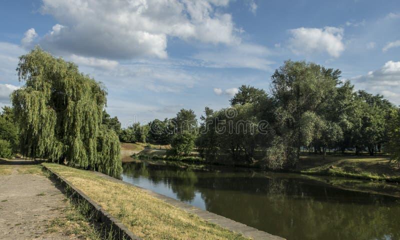 Do rio verde morno exterior do lago das árvores do tempo do calor da paisagem do parque do verão o céu azul nubla-se a recreação  imagens de stock