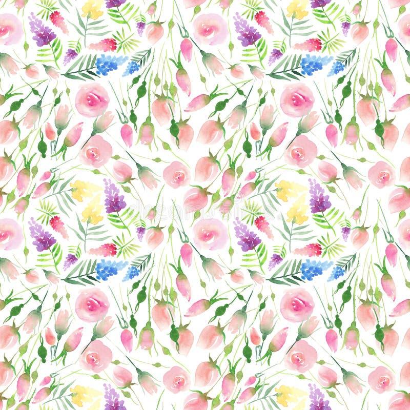 Do verão colorido floral bonito elegante bonito delicado da mola de Ender wildflowers vermelhos, azuis, roxos e amarelos e rosas  ilustração do vetor