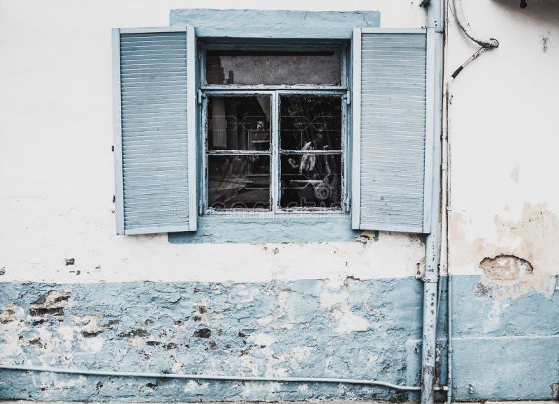 Do vintage gasto Louvered interno natural da plantação da madeira do vintage fundo branco do muro de cimento foto de stock royalty free