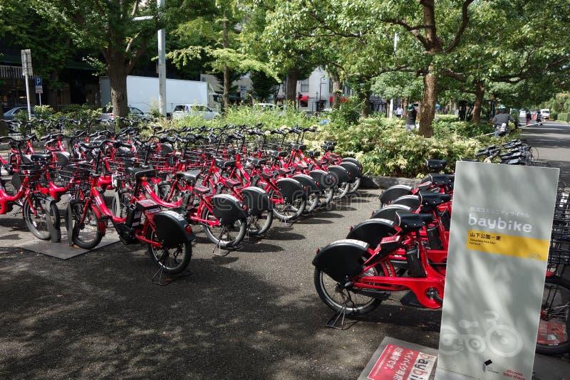 Do wynajęcia bicykl zdjęcie royalty free